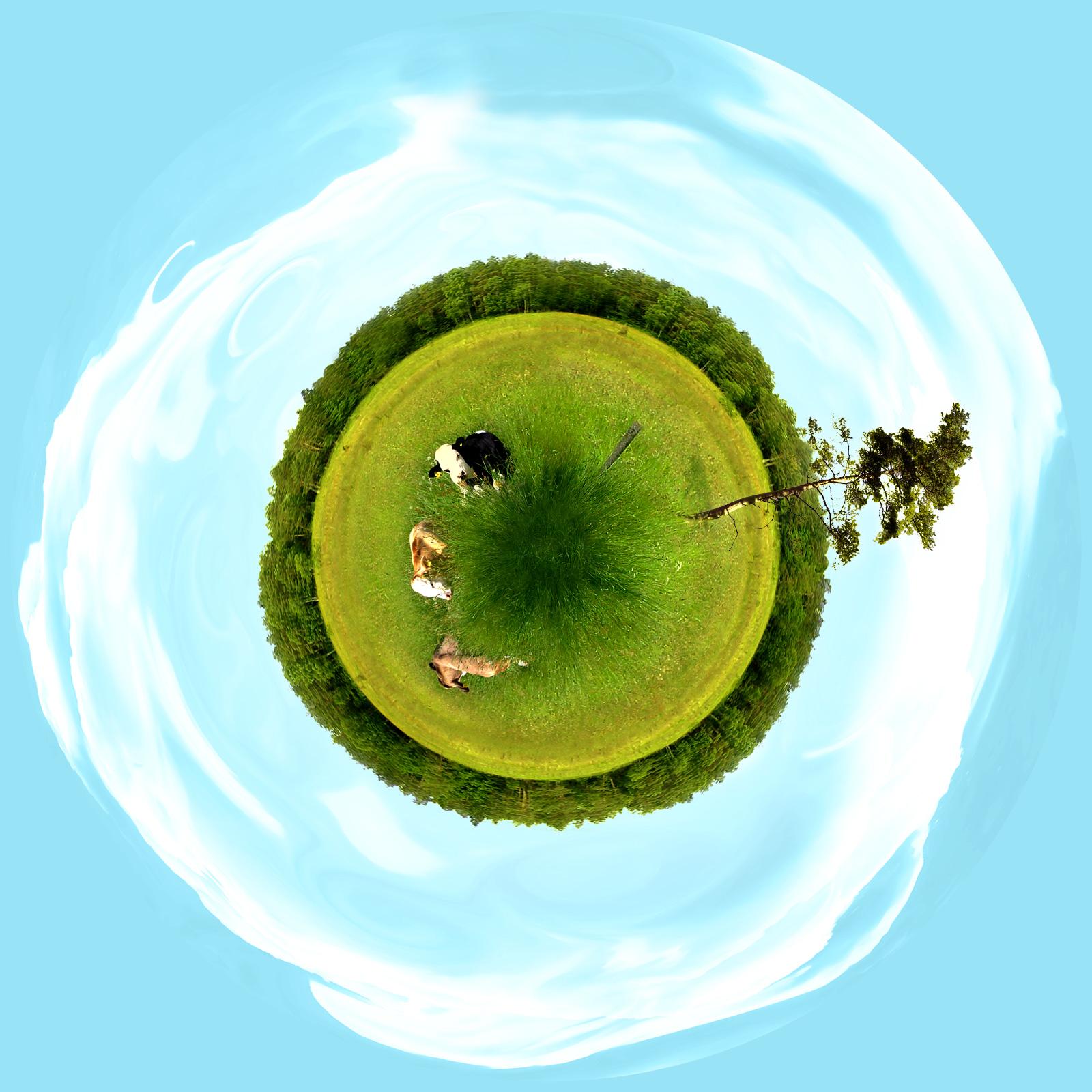 Cowscape-world